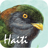 The Birds of Haiti and the Dominican Republic