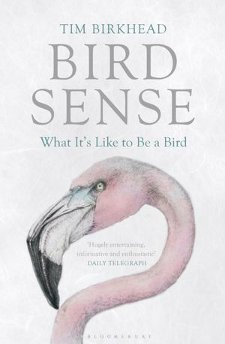 cover of Bird Sense: What It's Like to Be a Bird, by Tim Birkhead
