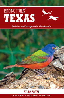cover of Birding Trails: Texas: Panhandle and Prairies & Pineywoods, by Jim Foster