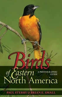 cover of Birds of Eastern North America: A Photographic Guide, by Paul Sterry and Brian E. Small