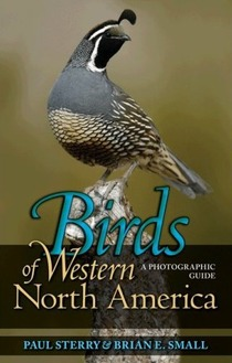cover of Birds of Western North America: A Photographic Guide, by Paul Sterry and Brian E. Small