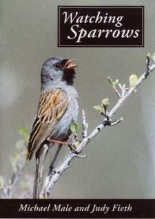 cover of Watching Sparrows DVD