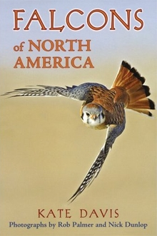 cover of Falcons of North America, by Kate Davis