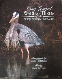 cover of Long-Legged Wading Birds of the North American Wetlands