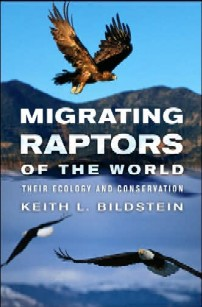cover of Migrating Raptors of the World: Their Ecology and Conservation