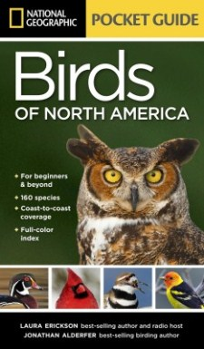 cover of National Geographic Pocket Guide to the Birds of North America, by Laura Erickson and Jonathan Alderfer