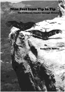 Nine Feet from Tip to Tip: The California Condor Through History