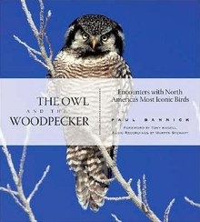 cover of The Owl and the Woodpecker: Encounters With North America's Most Iconic Birds, by Paul Bannick