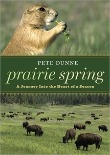 cover of Prairie Spring: A Journey Into the Heart of a Season, by Pete Dunne