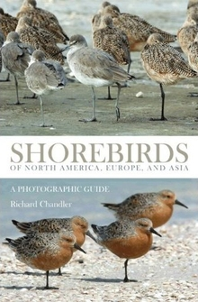 cover of Shorebirds of North America, Europe, and Asia: A Photographic Guide, by Richard Chandler