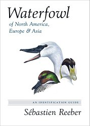 Waterfowl of North America, Europe and Asia: An Identification Guide
