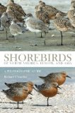 Shorebirds of North America, Europe, and Asia: A Photographic Guide