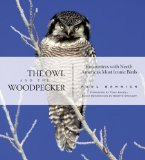 The Owl and the Woodpecker: Encounters With North America's Most Iconic Birds