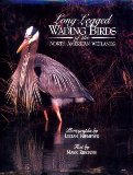 Long-Legged Wading Birds of the North American Wetlands