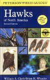 Hawks of North America (Peterson Field Guide)