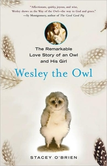 cover of Wesley the Owl: The Remarkable Love Story of an Owl and His Girl, by Stacey O'Brien