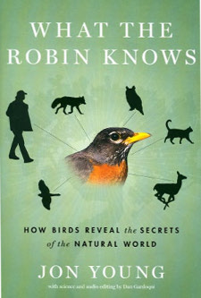 cover of What the Robin Knows: How Birds Reveal the Secrets of the Natural World, by Jon Young