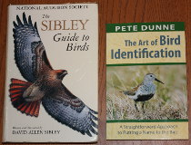 comparison front view of The Art of Bird Identification: A Straightforward Approach to Putting a Name to the Bird