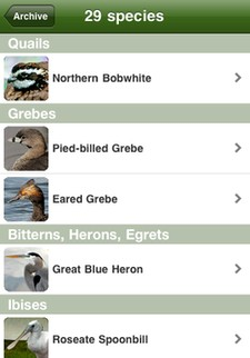 All species you've recorded in the Birdcountr iPhone app