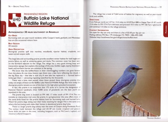 Sample site account from Birding Trails: Texas: Panhandle and Prairies & Pineywoods