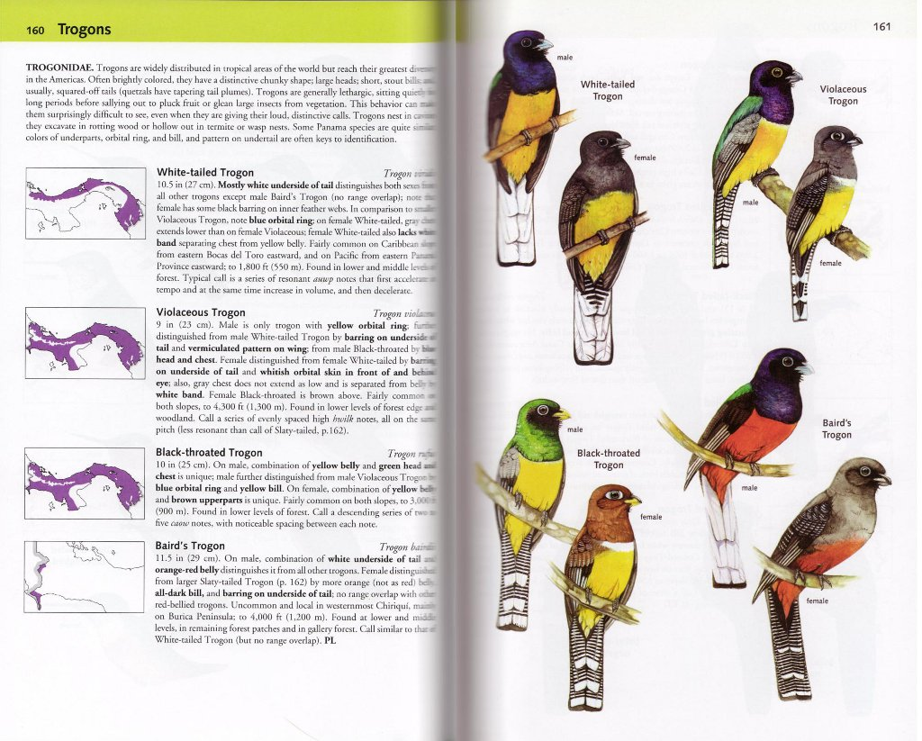 A Guide to the Birds of Panama