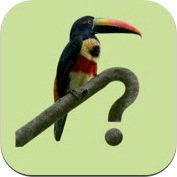 Costa Rica Birds Field Guide iOS app