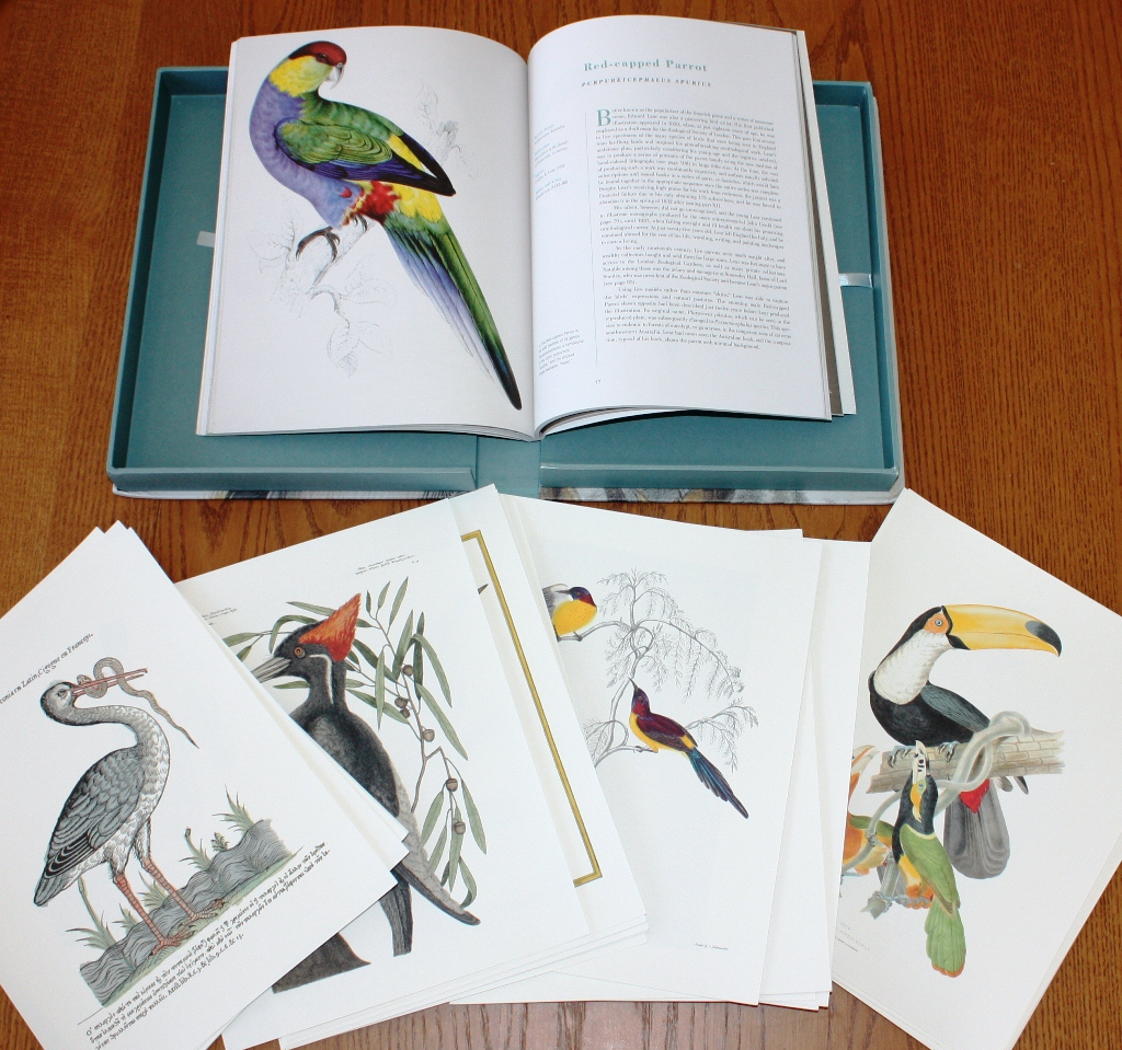 review extraordinary birds essays and plates of rare book book and prints from extraordinary birds essays and plates of rare book selections from the