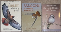 comparison front view of Falcons of North America
