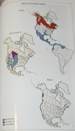 sample range map from Falcons of North America