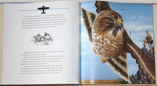 Broad-winged Hawk and Roger Tory Peterson from For the Birds: The Life of Roger Tory Peterson