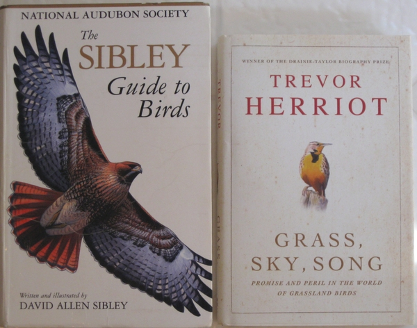 grass sky song promise and peril in world of grassland birds
