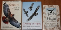 comparison front view of Hawks in Flight: Second Edition