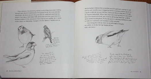 Evening Grosbeak sketches from Letters From Eden: A Year at Home, in the Woods