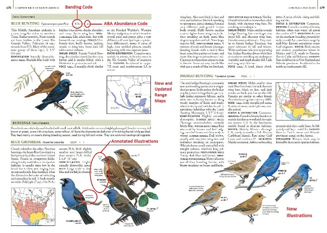Sample from National Geographic Complete Birds of North America, 2nd Edition