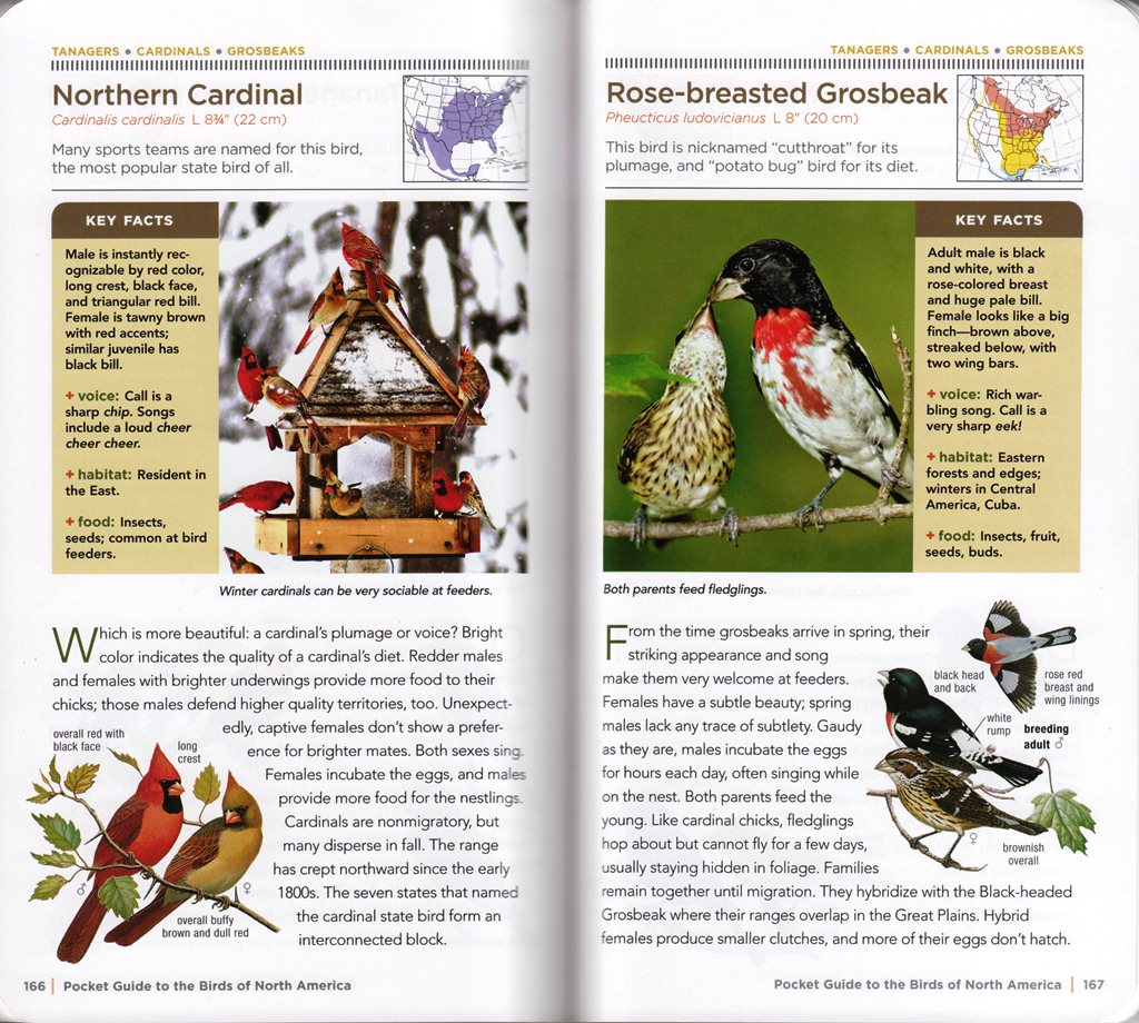 review national geographic pocket guide to the birds of north america