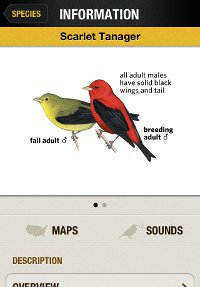 Scarlet Tanager species account from the National Geographic Birds iPhone app