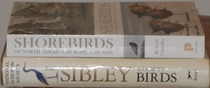 comparison side view of Shorebirds of North America, Europe, and Asia: A Photographic Guide