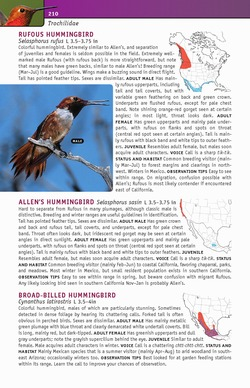 sample species accounts from Birds of Eastern / Western North America: A Photographic Guide