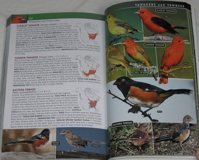 sample from Birds of Eastern / Western North America: A Photographic Guide