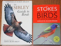 comparison front view of The Stokes Field Guide to the Birds of North America