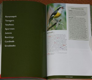 Sample family intro from The Stokes Field Guide to the Birds of North America