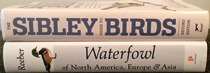 comparison side view of Waterfowl of North America, Europe, and Asia: An Identification Guide
