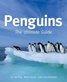 Penguins: The Ultimate Guide