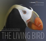 The Living Bird: 100 Years of Listening to Nature