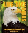 Life-size Birds: The Big Book of North American Birds