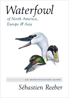 Waterfowl of North America, Europe, and Asia: An Identification Guide
