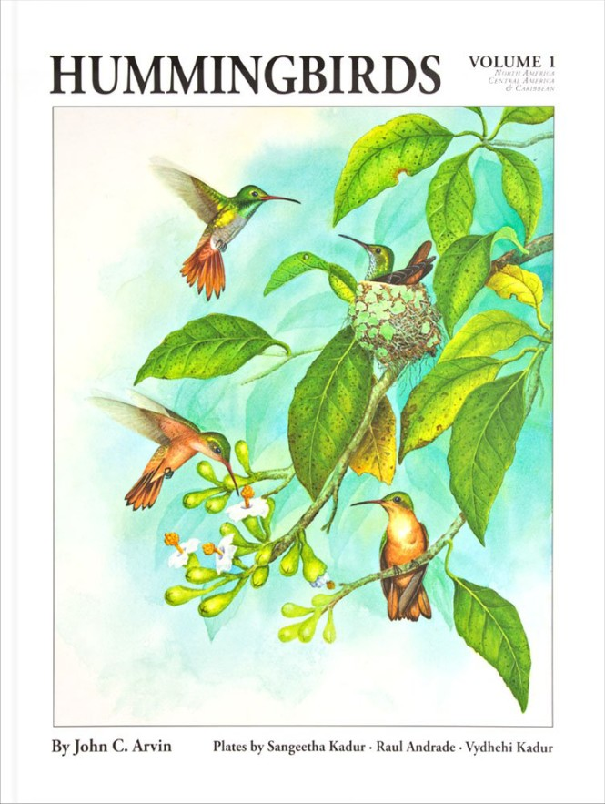 Hummingbirds: Volume 1