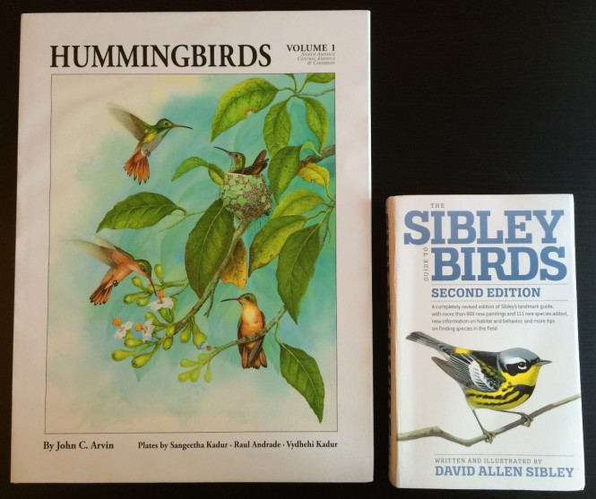comparison of Hummingbirds Volume 1 and the Sibley Guide