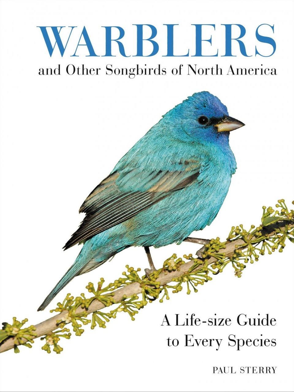 New Book: Warblers and Other Songbirds of North America: A Life-size Guide to Every Species
